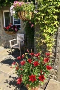 Hanging baskets and large plant pots add colour to your patio