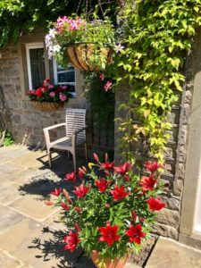 Add hanging baskets to brighten up your garden