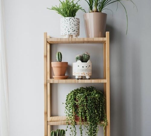 vertical shelving with greenery